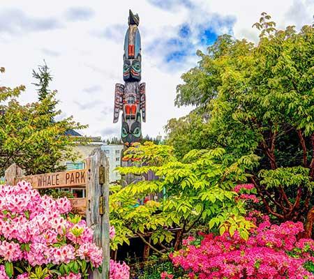 cruise-offer---Alaska