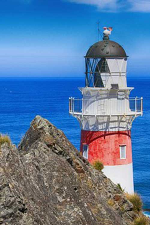 Ultimate-Cruise-sale-NZ