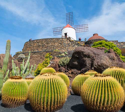 Pick-Your-Cruise-Savings--Canary-Islands