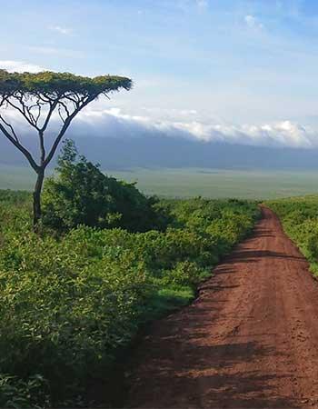 Tanzania near Ngorongoro Crater