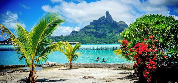 South Seas Cruise - swim in paradise